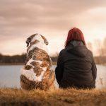 ブリーディングウォーカー日記 ~人間と犬との違い~
